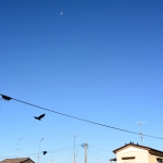 2014-09-14-asanp_027